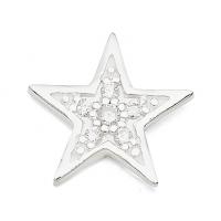 Silver Star / CZ Earrings