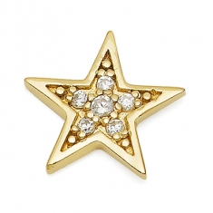 Gold Star / CZ Earrings